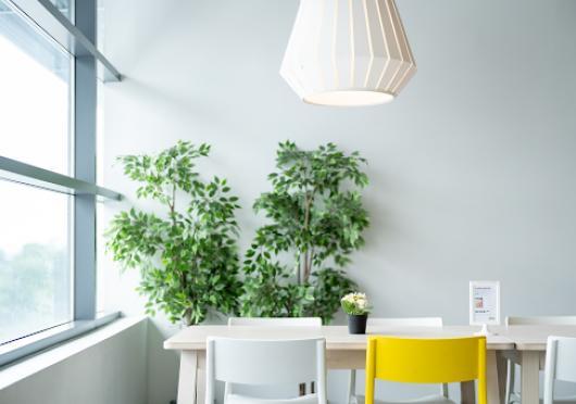 5 jednoduchých triků, jak změnit kancelář na eco-friendly